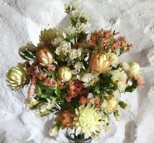 گل استاتیس خشک
